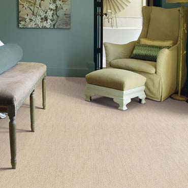 Caress Carpet by Shaw | Gresham, OR